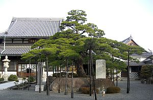 花岳寺.jpg