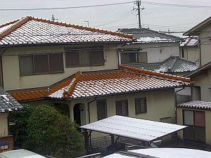 向かいの雪.jpg